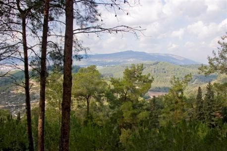 הרי מנשה, מבט מפארק מנשה. צילום: אייל ברטוב, ארכיון הצילומים של קק''ל
