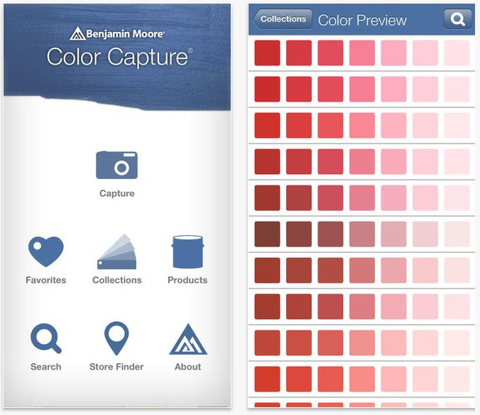 צילום: אפליקציית Color Capture